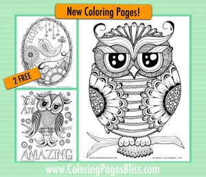 New Owl Coloring Pages