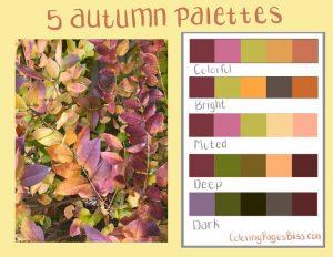 Five Autumn Color Palettes