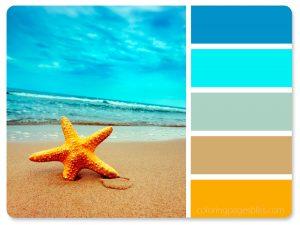 Sea Star on Beach Color Palette