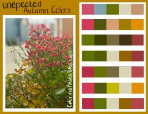 Unexpected Fall Colors Color Palette