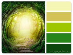 Wonderland Forest Color Palette