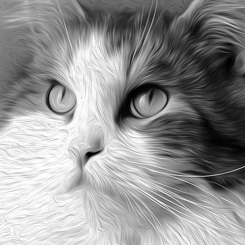 Closeup of Grayscale Artistic Style