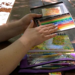 Faber-Castelle Polychromos Colored Pencils