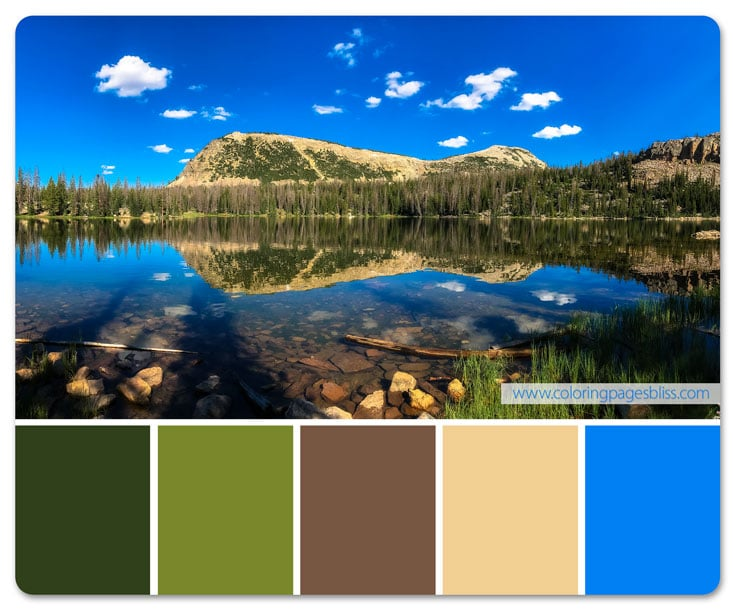 Scout Lake Color Palette