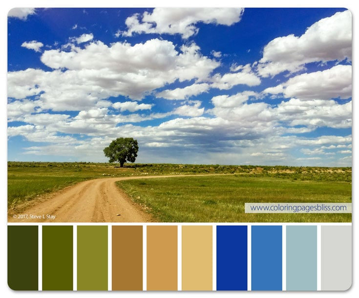 Lone Tree Color Palette