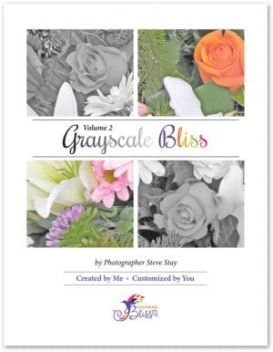 Grayscale Bliss Volume 2 Coloring Book