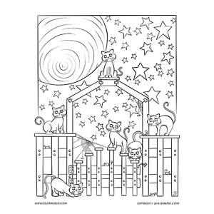 Night Cats Under the Stars