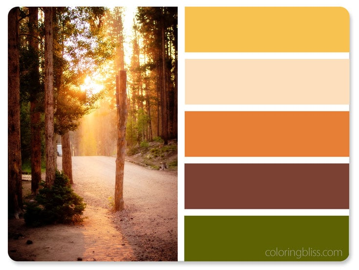 Mountain Road Sunset Color Palette
