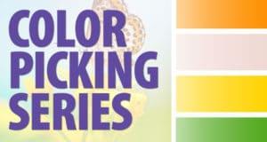 Picking Colors Workshops