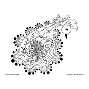 Doodle Peacock